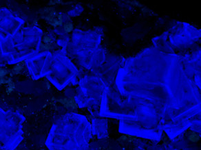 Rich Blue Fluorite Crystals with Phantoms - China