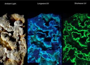 Wavelite from Mt Ida, Arkansas - Longwave and Shortwave