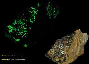Meta-Uranocircite - Annie Creek, South Dakota