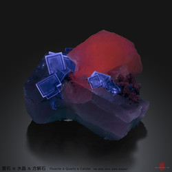 Wish Wang - 79B58D9F-D33F-49DD-85E2-8877