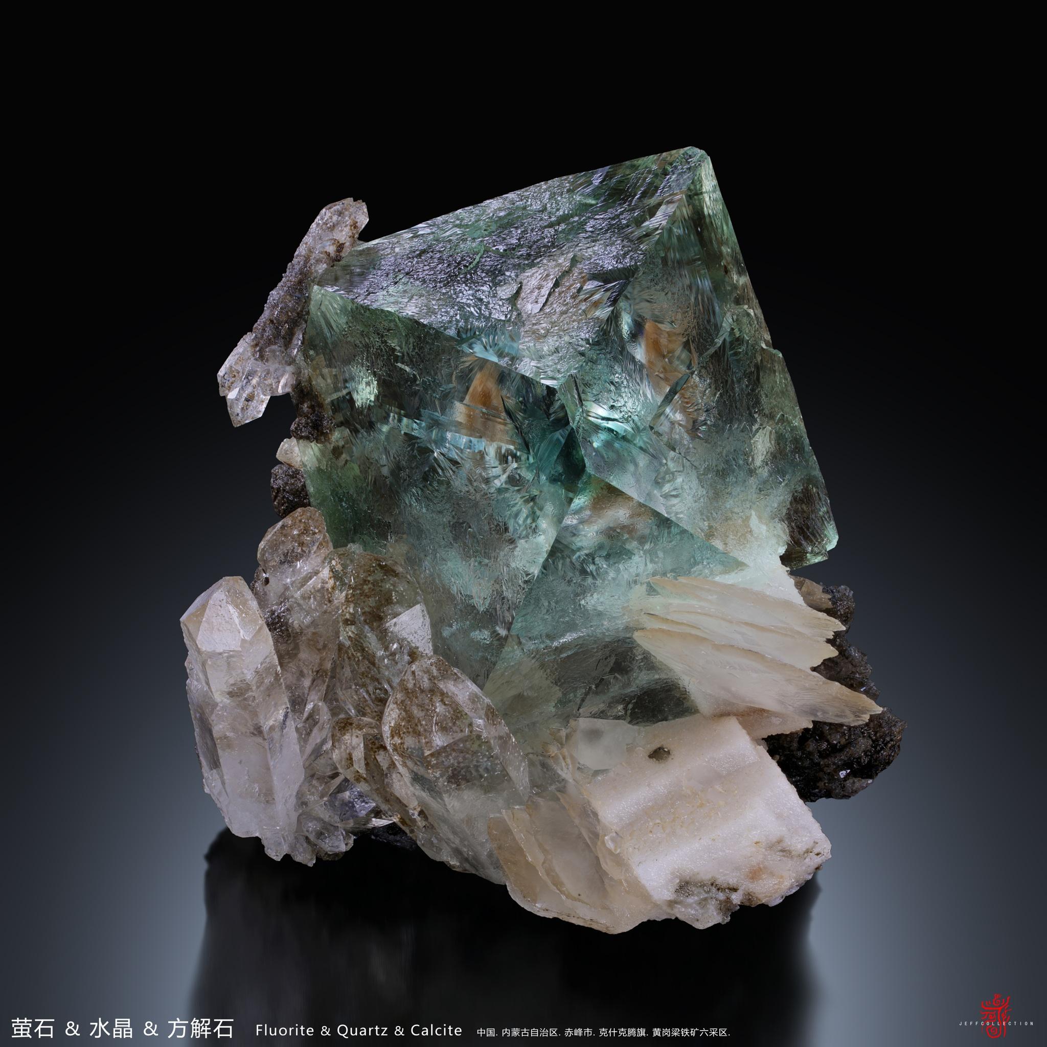 Wish Wang - 1E78C766-3711-4EE9-A1DC-55D7