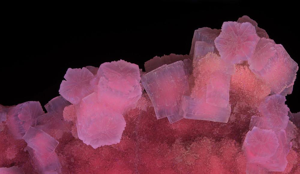 Aragonite on Calcite - Sicily, Italy - Longwave UV