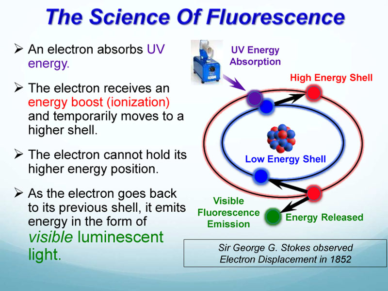 TV Fluorescent Rock Presentation corrected-8o