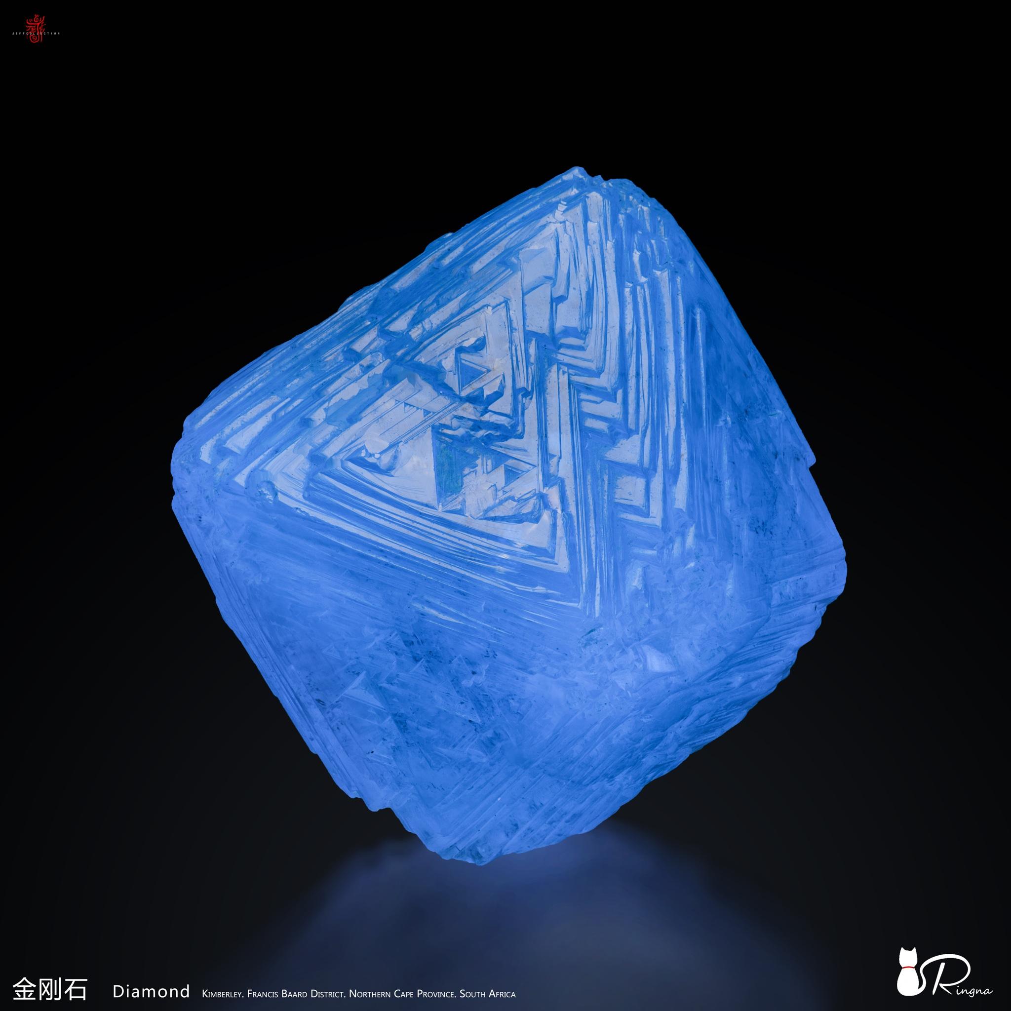 Wish Wang - 5D1FEFB3-2DEB-4A9D-9893-1D96