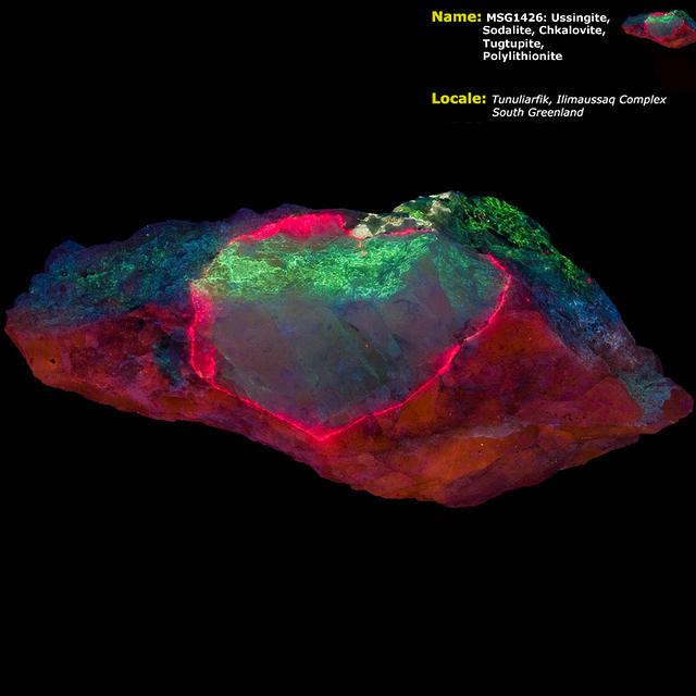 Tugtupite, Sodalite, Chkalovite, Ussingite, Polylithionite - Ilimaussaq, Greenland