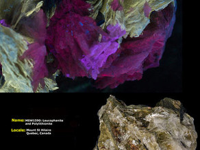 Leucophanite and Polylithionite - Mt. St. Hilaire, Canada