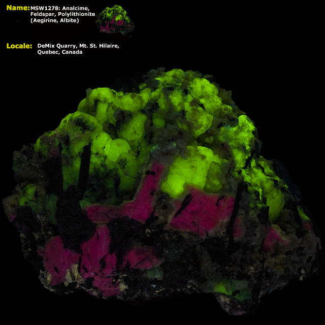 Analcime, Feldspar, Polylithionite - Mt. St. Hilaire, Canada