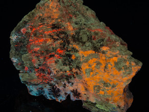 Sodalite (Hauyne?), Phlogopite, Gonnardite, Unknowns - Afghanistan