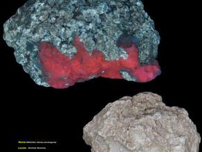 Calcite and Aragonite - Worland, Wyoming