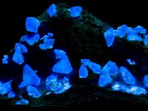 Benitoite - Dallas Gem Mine, California, USA