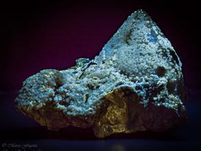 Fluorescent Scheelite Crystals on Quartz, Cínovec / Zinnwald (Cinvald), Erzgebirge; Krusné Hory Mts