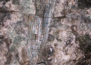 A Short Study on Rare Occurrences of Apatite from the Ilimaussaq Complex, Greenland, associated w/ B
