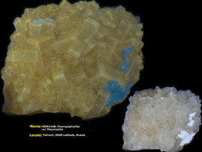 fluorapophyllite w/ Thaumasite - Talnach, Russia