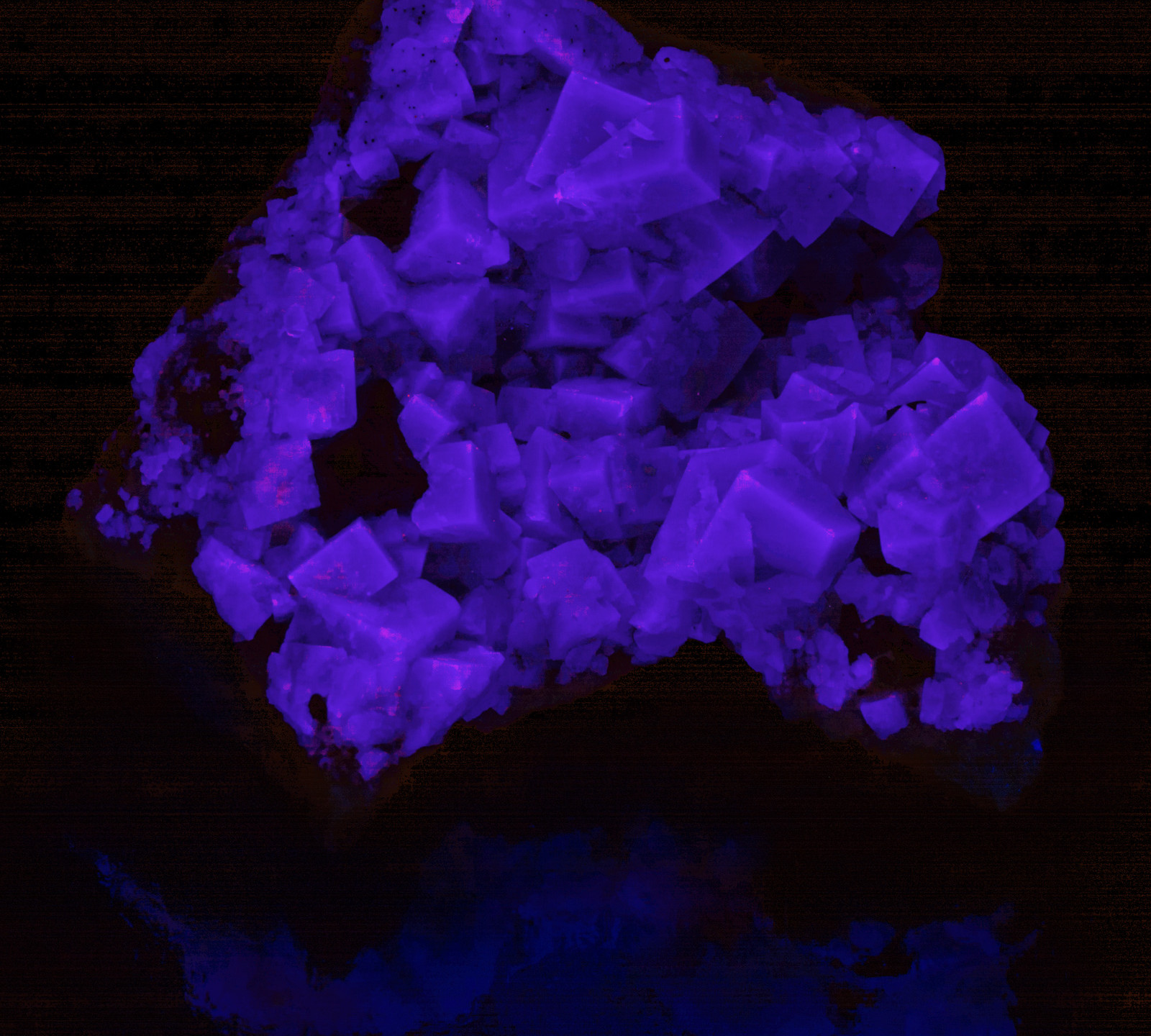 Rogerly Fluorite - LONGWAVE