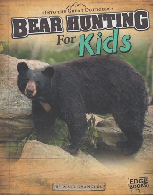 Bear lowres