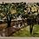 "Thumbnail: Bike Path ""let's ride""  &  English Cottages"