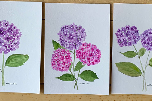 Assorted Flowers Hydrangeas & Sunflower  Series  Blank Note Cards