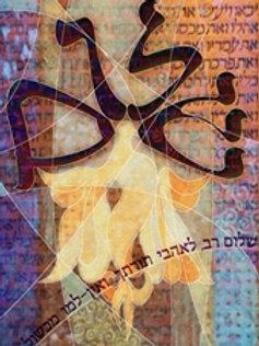 Shalom GP