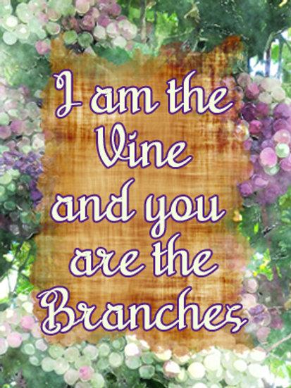 I AM the Vine GP