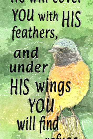 He Will Cover You with His Feathers GP