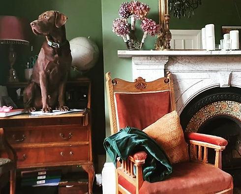 laura and elliot dog.jpeg
