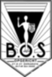 Bos logo-1.jpg