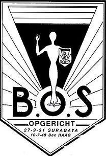 Bos%20logo-1_edited.jpg
