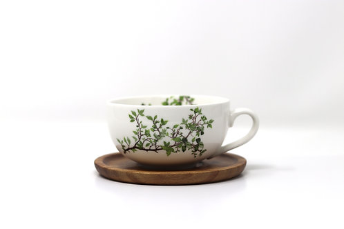 natura porcelain china tea cup & saucer