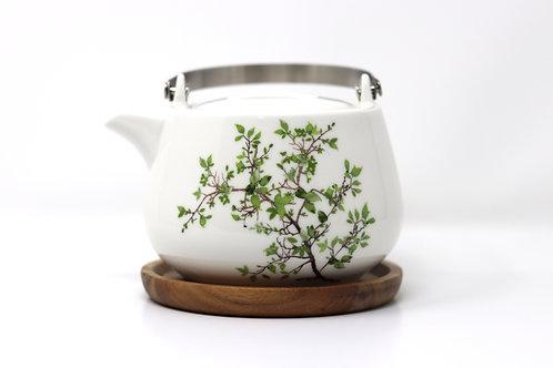 natura porcelain china teapot