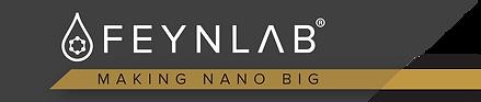feynlab-logo.png