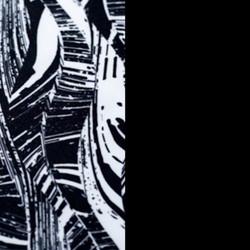 Black Palm/Blacksand