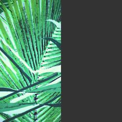 Jungle Palm/Charcoal