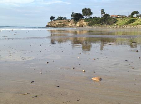 Beach Clean Up-June 18th 2016