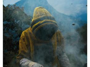 Enfumage - Projet Bolivie