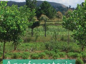 Innover en agriculture dans les pays du Sud ?