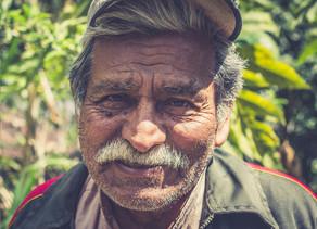 En Bolivie, l'apiculture protège les forêts