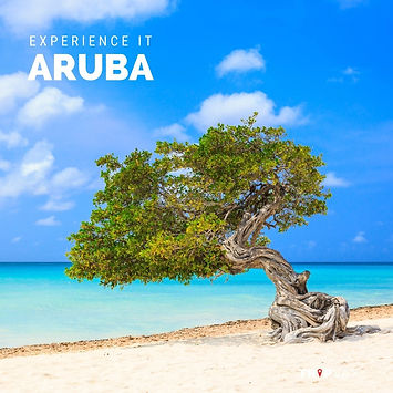 EXP it Aruba.jpg