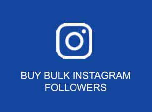 buy instagram followers wholesale India, buy cheap bulk instagram followers India