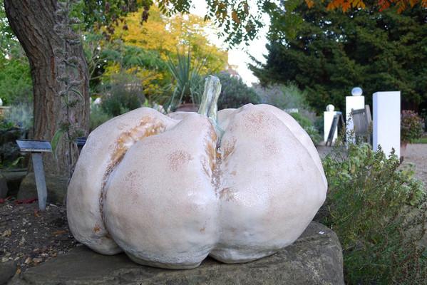 The Orange Pumpkin