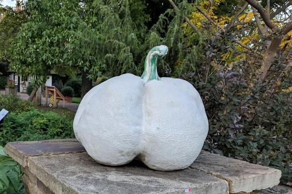 The White Pumpkin