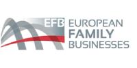 P10: European Family Businesses, GEIE, Belgium