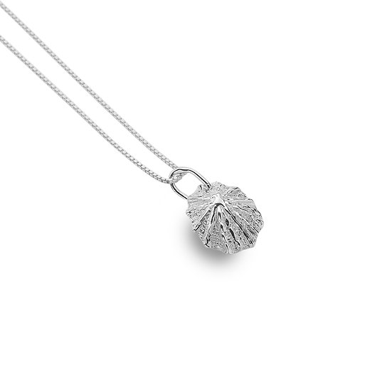 Limpet Shell Pendant, Silver