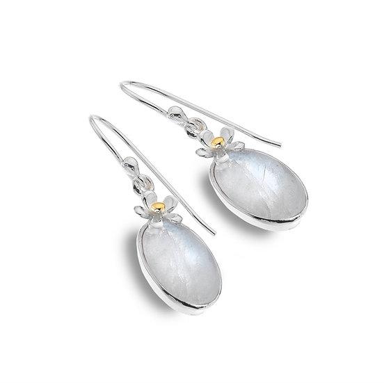 Daisy Moonstone Earrings