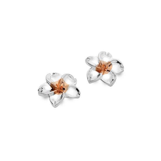 5 Petal Flower Stud Earrings