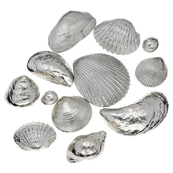 Set of Sennen Shells