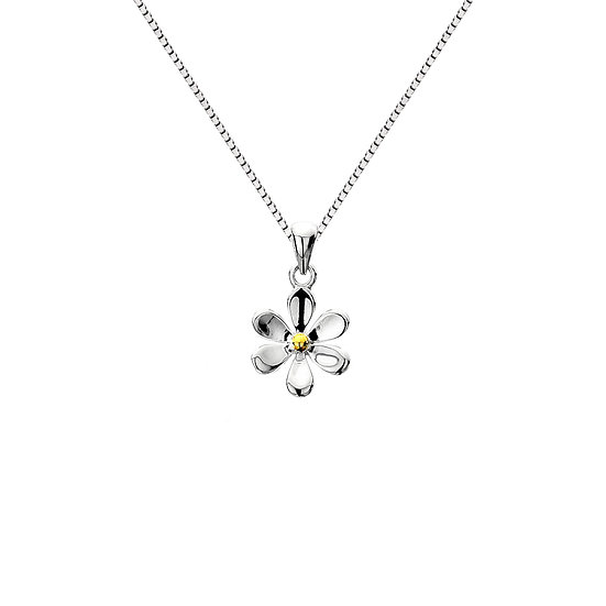 Silver Daisy Pendant with Brass