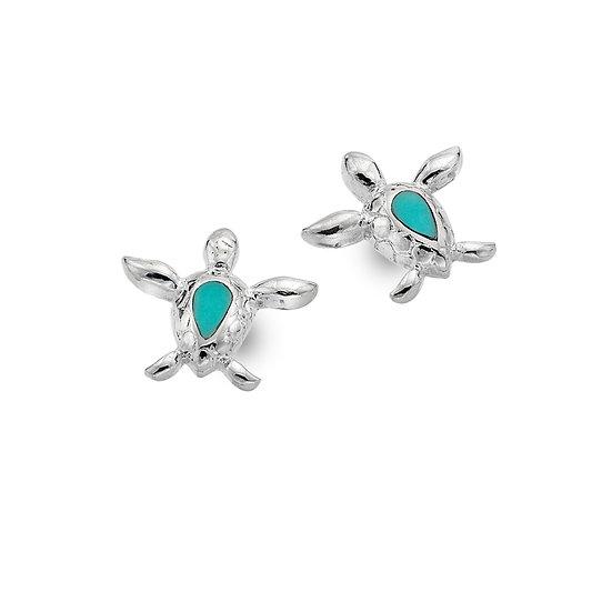 Sea Turtle Stud Earrings, Turquoise or Paua Shell