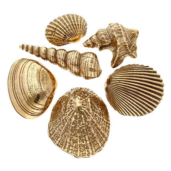 Set of Sennen Shells in Cornish Bronze