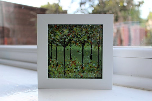 Olive Trees Woodland Picture