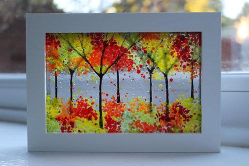 Autumn Days Woodland Picture